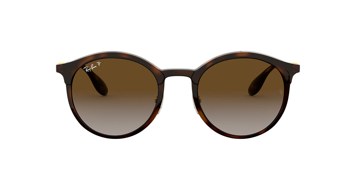 Tortoise RB4277 Polarized Brown Gradient  51