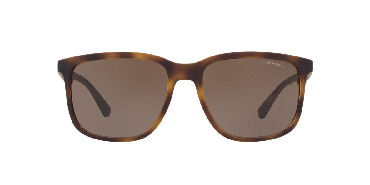 Tortoise EA4104 Brown  57