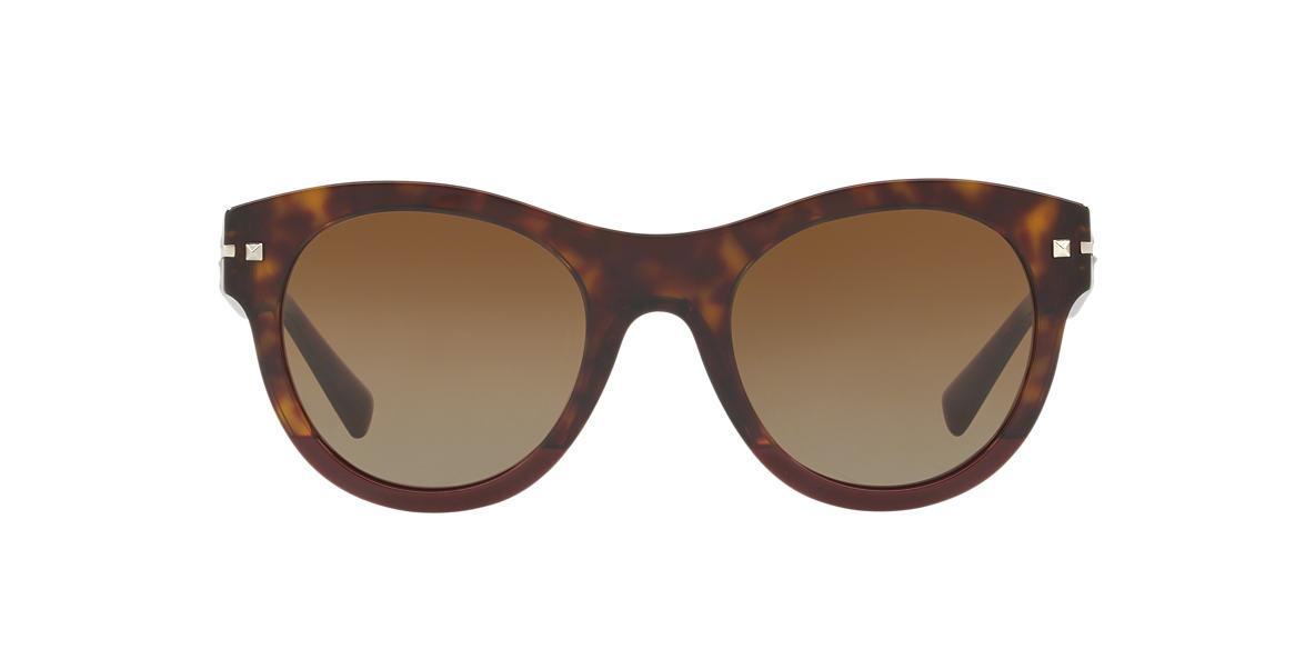 Tortoise VA4020 Brown  51