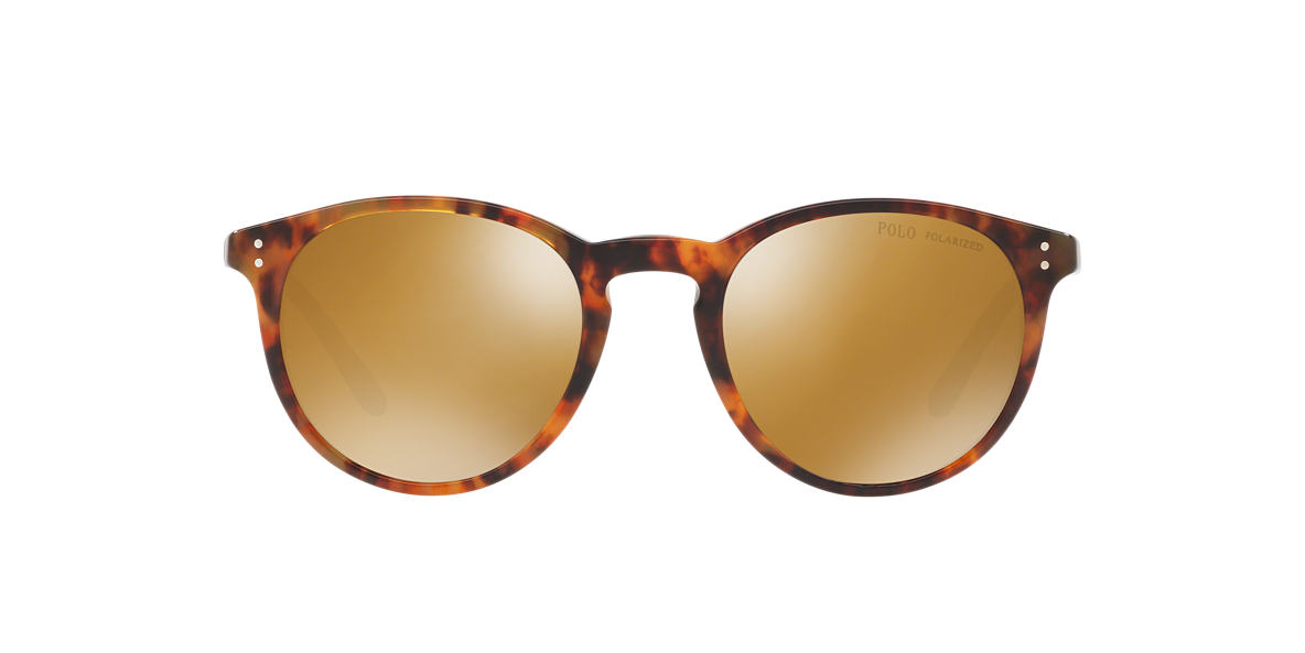 Tortoise PH4110 Brown  50