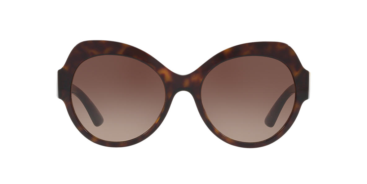 Tortoise DG4320 Brown  56