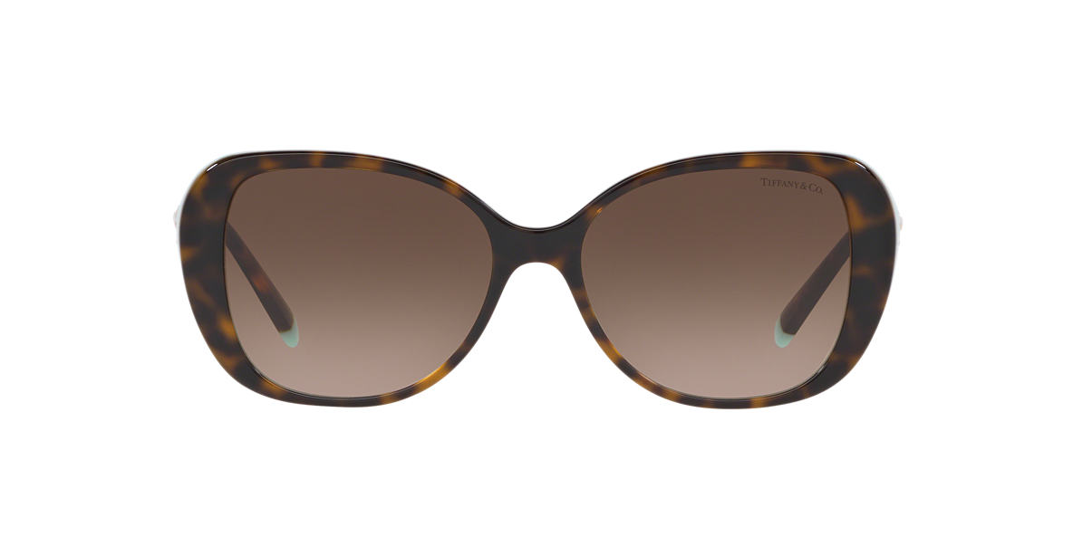 Tortoise TF4156 Tiffany T Brown  55
