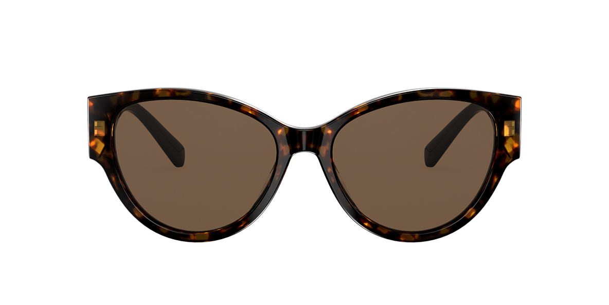 Tortoise VE4368 Brown  FA