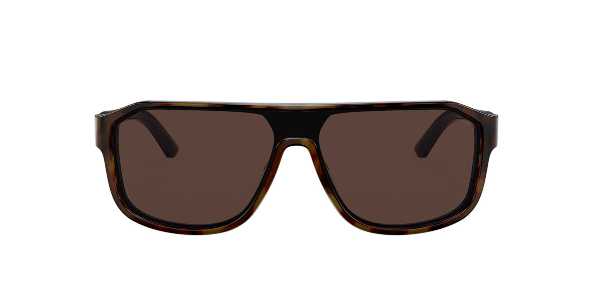 Tortoise SH5025 Brown  FA