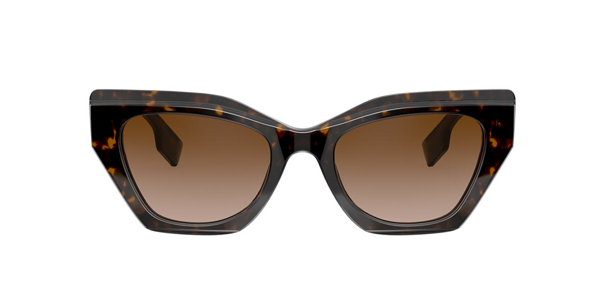 Tortoise BE4299 Brown Gradient