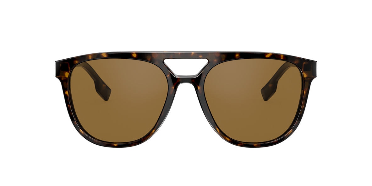 Tortoise BE4302 Brown