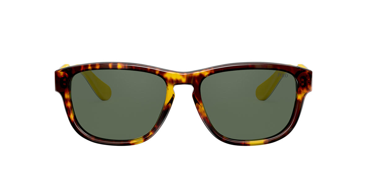 Tortoise PH4158 Green