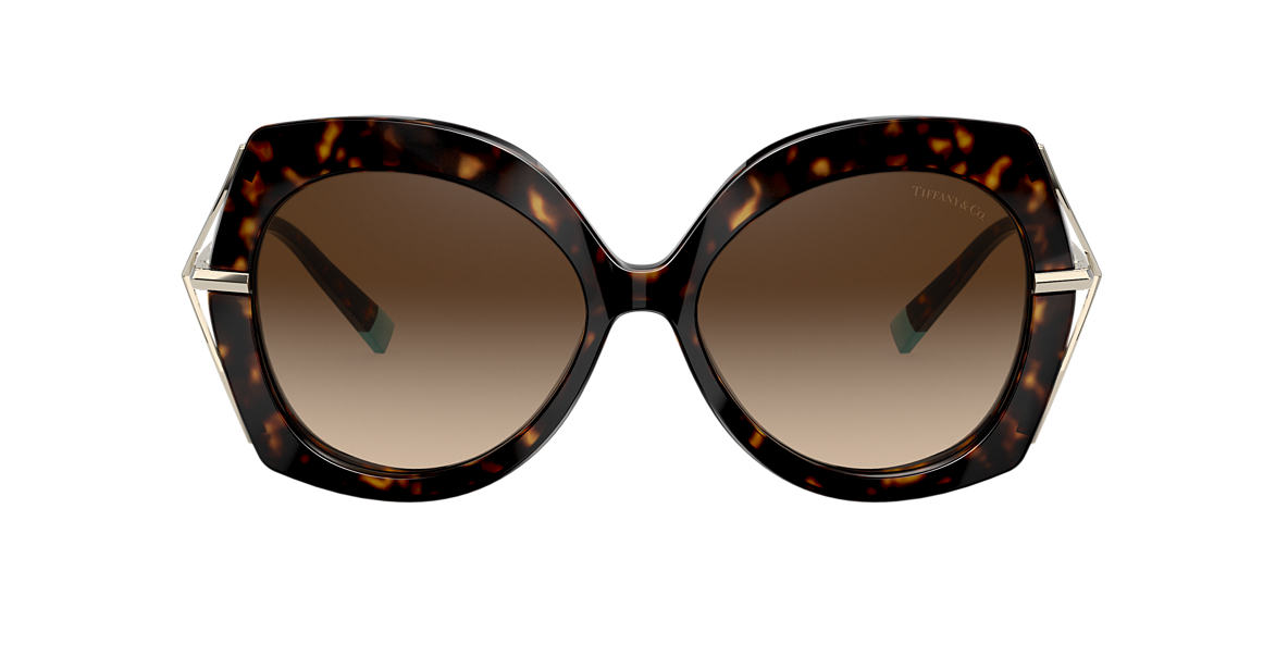 Tortoise TF4169 Tiffany Wheat Leaf Brown Gradient