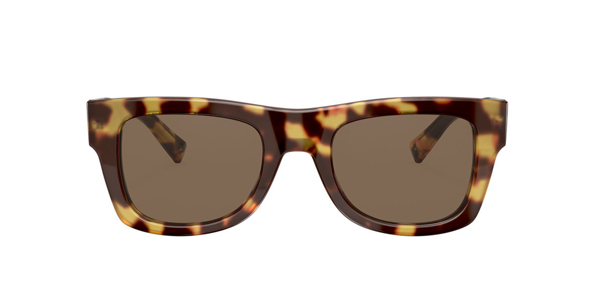 Tortoise VA4045 Brown Gradient