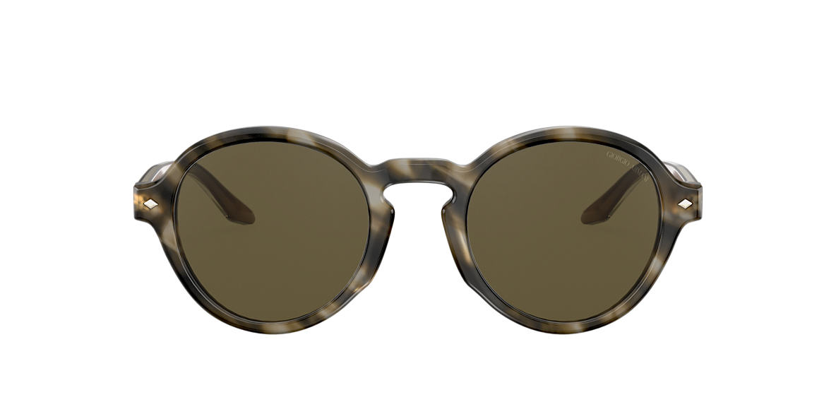 Tortoise AR8130 Brown Gradient