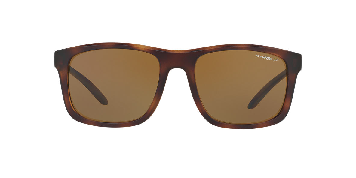 Tortoise AN4233 Brown  FA