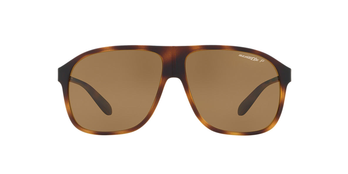 Tortoise AN4243 Brown  60
