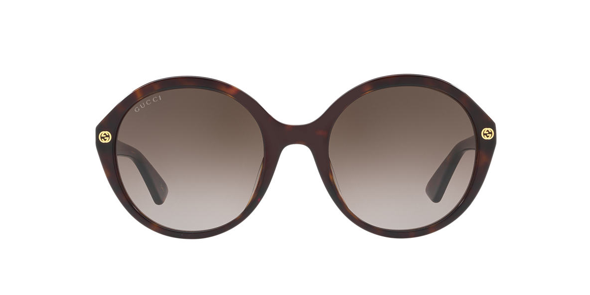 Tortoise GG0023S Brown  55
