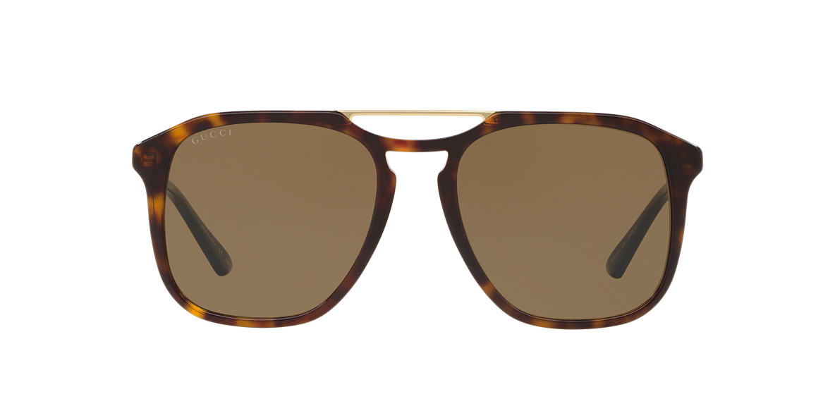 Tortoise GG0321S Brown  55