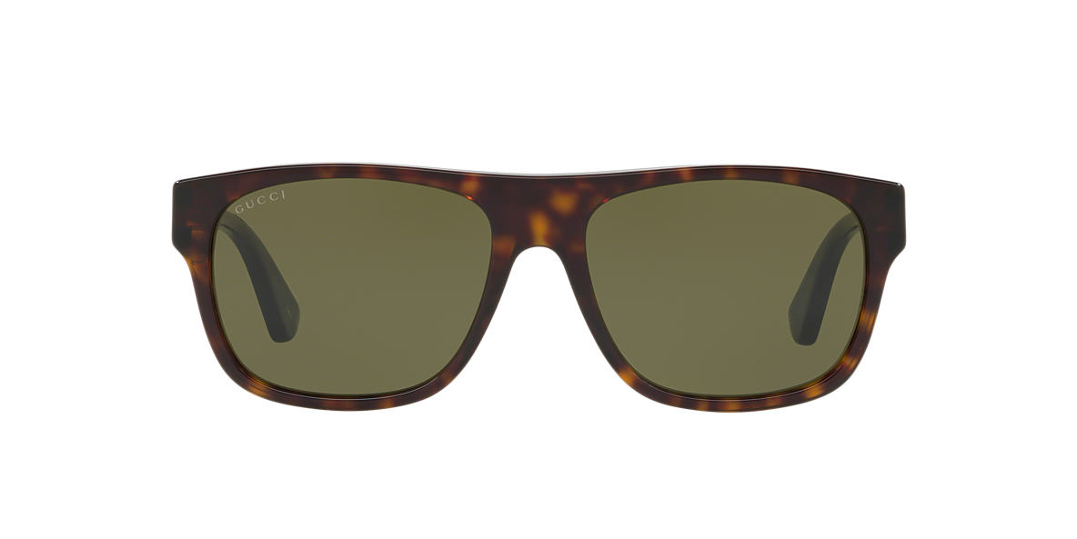 Tortoise GC001147 Green  56