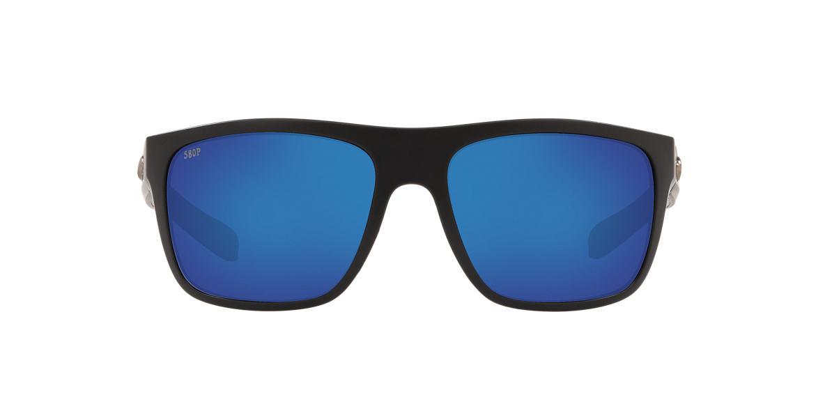 Gold Broadbill Blue  61