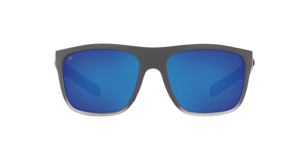 Black Broadbill Blue