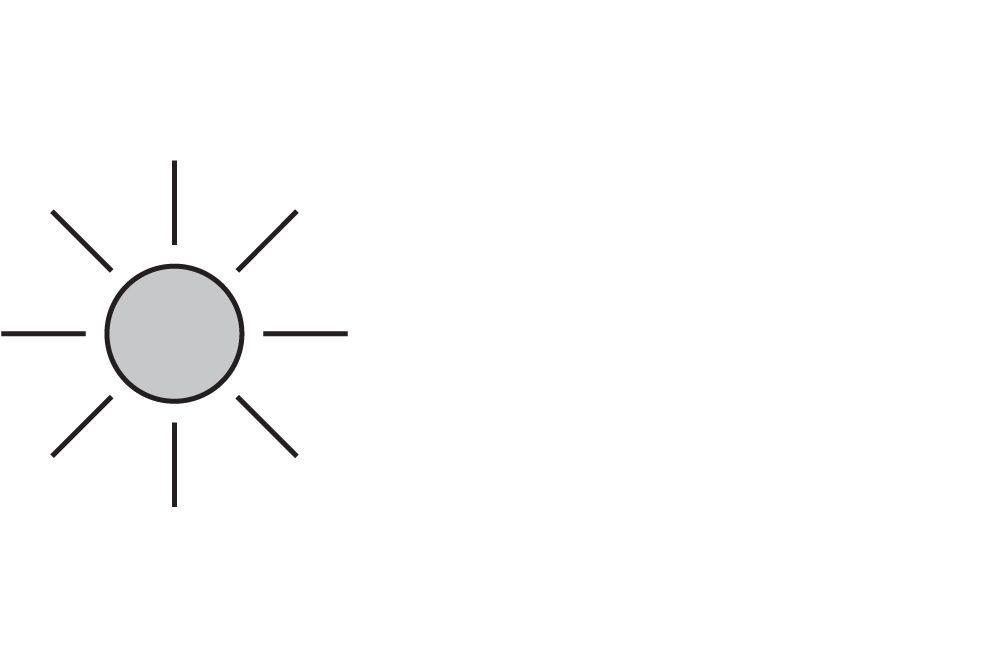 black sun icon