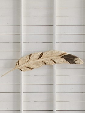 Golden Eagle Feather Wall Art