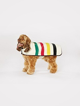 Medium National Park Dog Coat