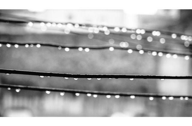 Rope drops - jose