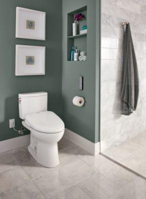 drake ii 1g twopiece toilet elongated bowl 10 gpf