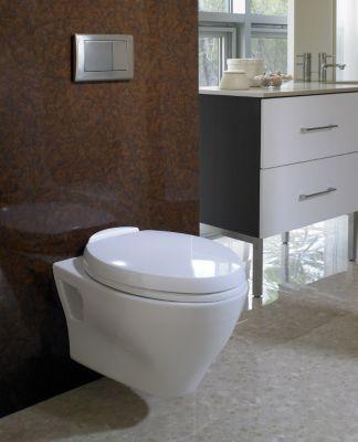 Aquia Wall Hung Dual Flush Toilet 1 6 Gpf 0 9 Elongated Bowl