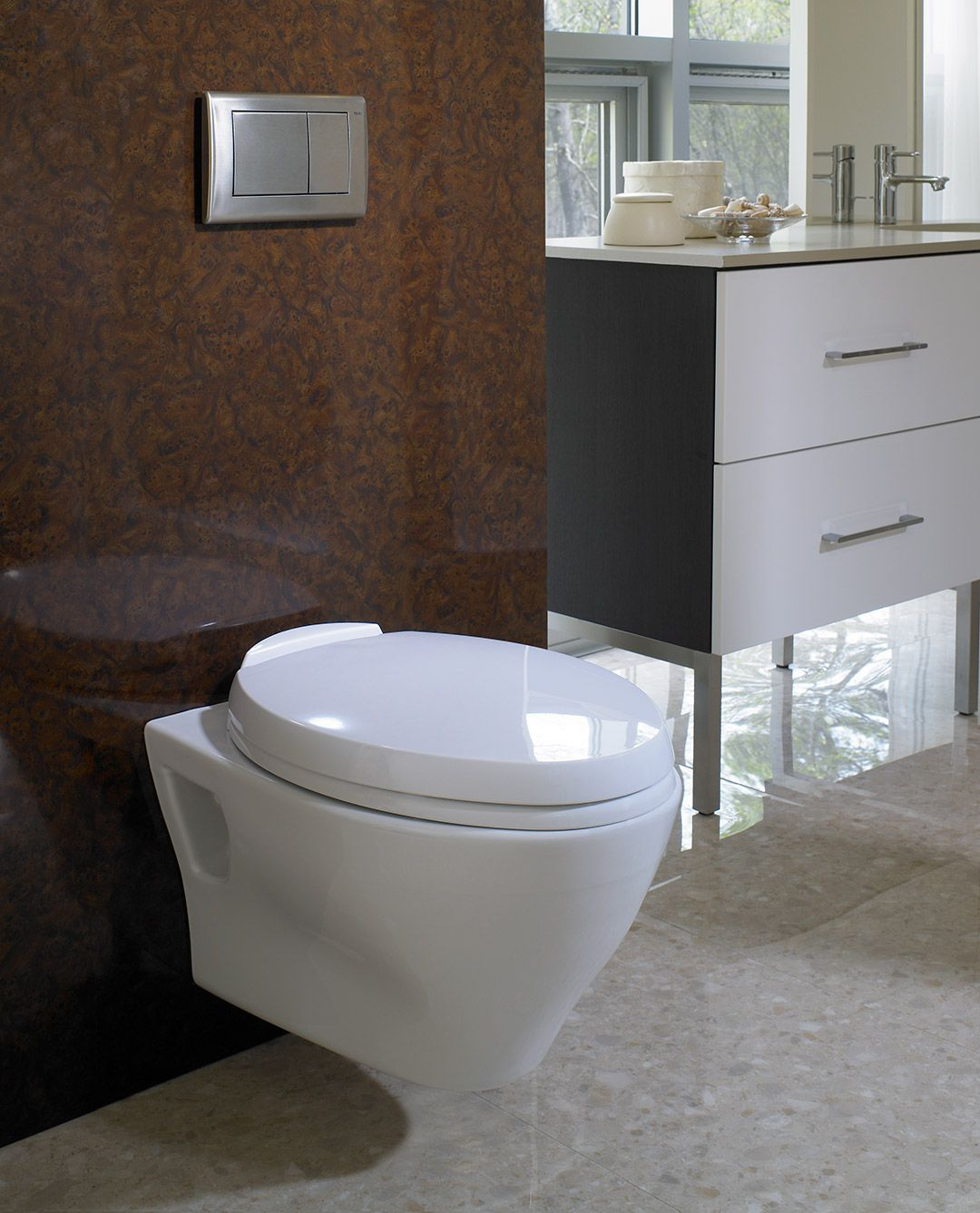 Aquia wall hung dual flush toilet 1 6 gpf 0 9 gpf for Flush with the wall