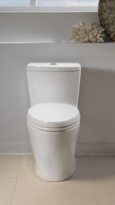AquiaR One Piece Toilet 16 GPF 09 Elongated Bowl