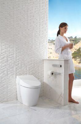 Neorest 174 550h Dual Flush Toilet 1 0 Amp 0 8 Gpf Totousa Com
